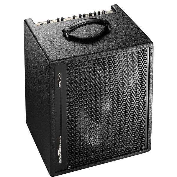 AER Amp Two -bassocombo.